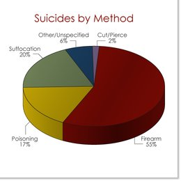 suicide-by-method-chart.jpg